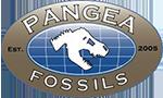 Pangea Fossils